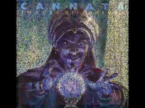 Jeff Cannata - Fortune Teller (Rockklassiker)