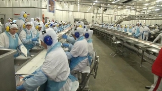 Brazil's meat industry gets grilling from EU