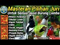 Masteran Burung Pilihan Juri  Mp3 - Mp4 Download