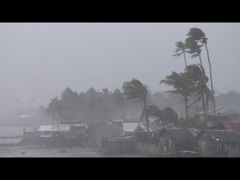 Howling Wind, Lashing Rain - 4K Footage Screen Typhoon Hagupit Philippines