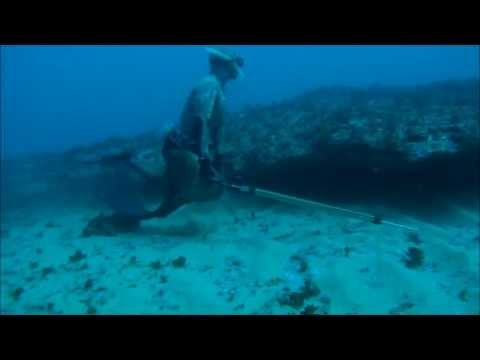 Pesca Submarina no Algarve - Spearfishing in Algarve - Portugal - GoPro HD Hero