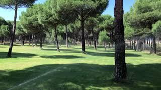Desconecta en RIBERDUERO Camping&Bungalows**** , Peñafiel (Valladolid)