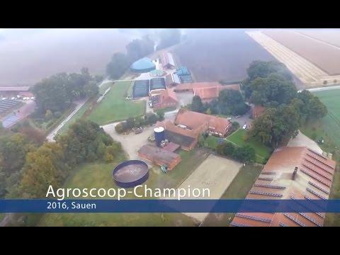 ForFarmers - Agroscoop-Champion 2016 - Sauen