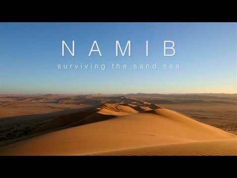 Namib: Surviving the Sand Sea Documentary