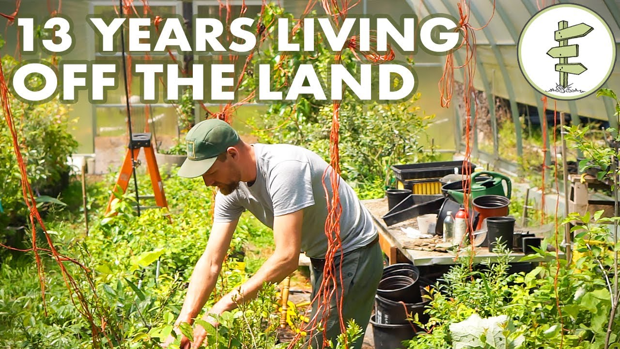 13-years-living-off-the-land-man-shares-challenges-lessons-learned