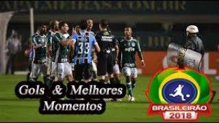 Palmeiras x Grêmio - Gols & Melhores Momentos Brasileirão Serie A 2018 29ª Rodada