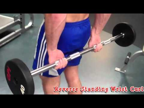 How To: Reverse Standing Wrist Curl - YouTube