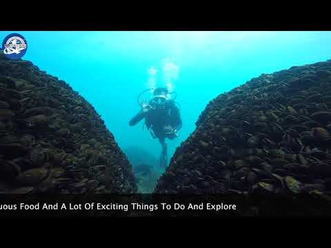 Kovalam Dive and Dine Package
