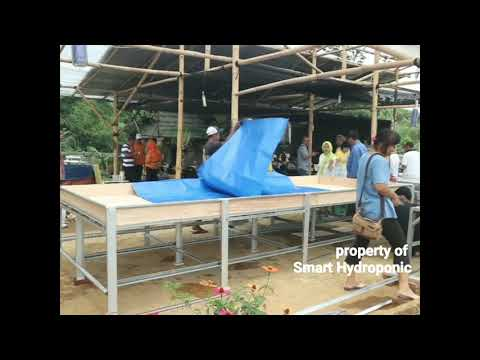 THE MAKING OF HYDROPONIC FLOATING RAFT SYSTEM