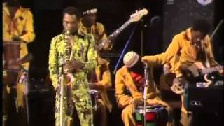 fela kuti roforofo fight track pansa pansa video 1978