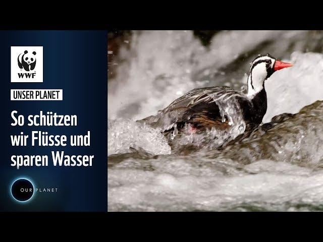 So schützen wir Flüsse und sparen Wasser | WWF Unser Planet