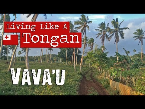 Living Like A Tongan | Vava'u | Kingdom of Tonga