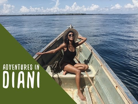 SPOTTING DOLPHINS AND OTHER ADVENTURES IN DIANI | THIS IS ESSMAS