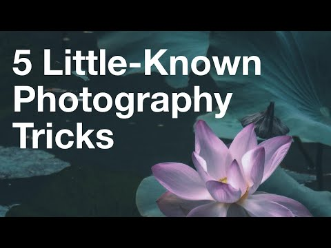 5 Little-Known Tricks For Taking Incredible Photos