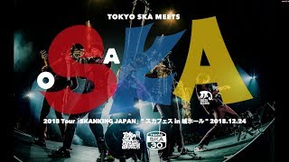 "『2018 Tour「SKANKING JAPAN」"" スカフェス in 城ホール"" 2018.12.24』 ダイジェスト映像/東京スカパラダイスオーケストラ"