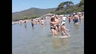 spiaggia di Lacona a Capoliveri Isola d'Elba