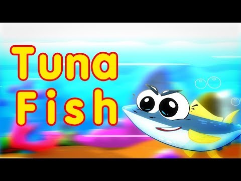 Tuna Fish - Toyor Baby Englsih