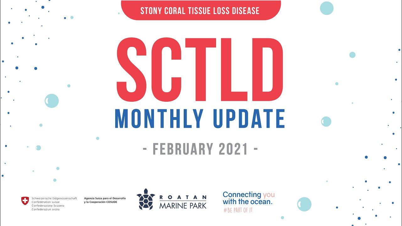 RMP SCTLD Update February 2021