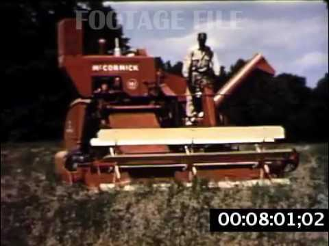 STOCK FOOTAGE: MILK, DAIRY FARM, DAIRY INDUSTRY, 1950s #FF875