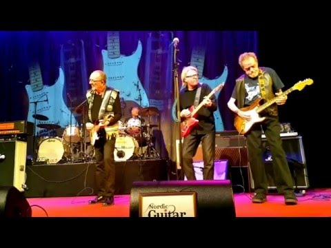 The Spotnicks - My Bonnie + Old Spinning Wheel Medley at NGC Festival Lerum, 7.05.2016