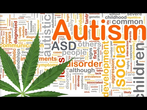 Cannabis A Treatment For Autism