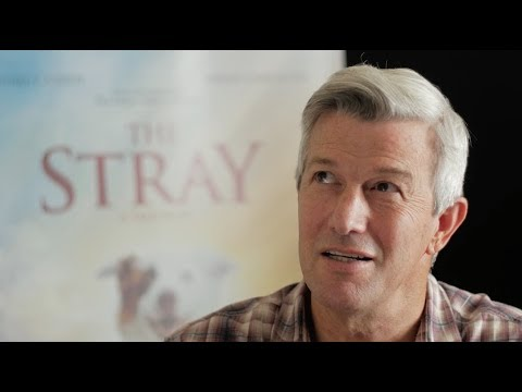 """THE STRAY - Director Mitch Davis on Inspiration for """"The Other Side of Heaven"""""""