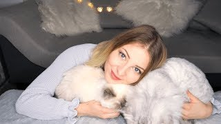 ASMR WITH CATS 🐱| ULTRA TINGLY CUDDLE HEAVEN AND EATING SOUNDS