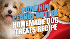 Pumpkin Peanut Butter Homemade Dog Treats Recipe