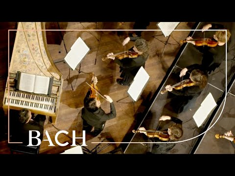 Bach - Orchestral Suite No. 1 in C major BWV 1066 - Sato | Netherlands Bach Society
