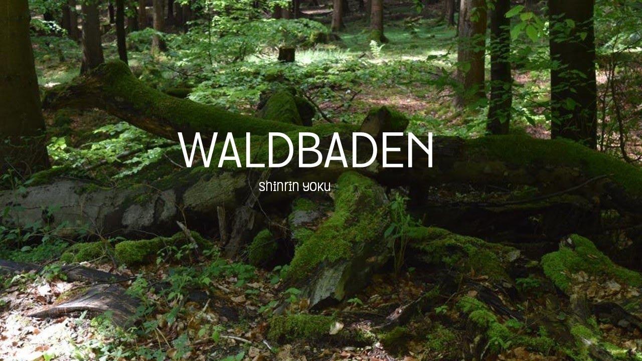 Waldbaden im Taunus