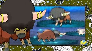 wshc 8 2015 16 live reaction shiny bouffalant after only 66 res in black 2 repel trick