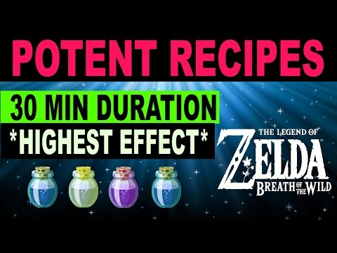 Cooking Elixir & Food Recipes - HIGH LEVEL 30 Minute Durations - Zelda: Breath of the Wild