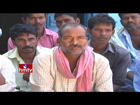 Success Story of Tribal Farmers In Agriculture Marketing | Nela Talli | HMTV