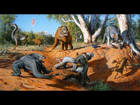 Megalania vs marsupial lion - photo#18