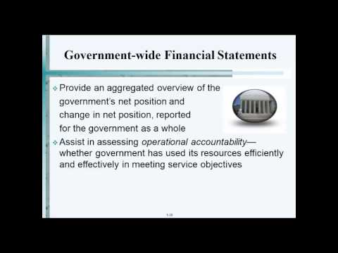 Government wide Financial Statements