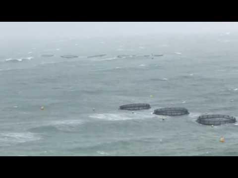 Maltese Fish Farm (Fusion Marine Pens) During a Winter Storm 2