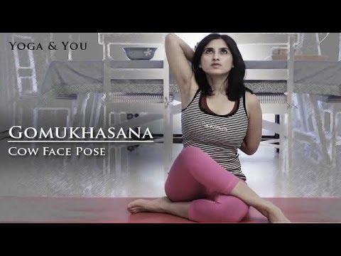 gomukhasana cow face pose  youtube