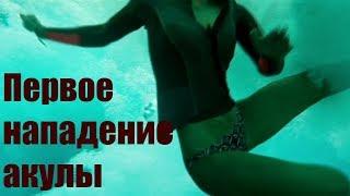 Отмель 2016. Встреча с мертвым китом и первое нападение АКУЛЫ.