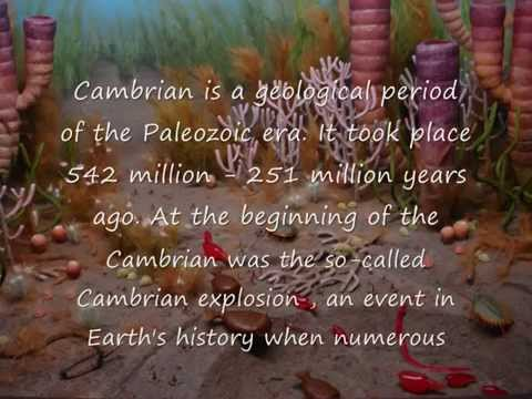 Geological Time Periods        Part 2- Cambrian, Ordovician And Silurian