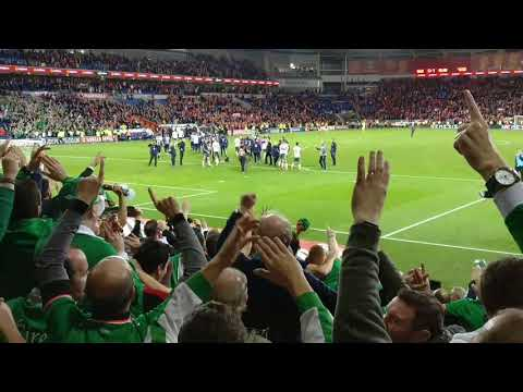 Ireland v Wales. Ireland fans c'mon you boys in green after game.