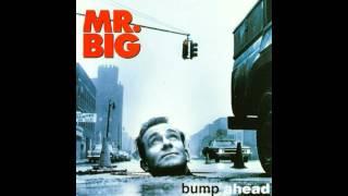 Mr. Big - Ain