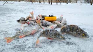 открытие зимней рыбалки на микро окуня в Запорожье или куда ехать и что брать на зимнюю рыбалку