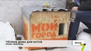В Одессе установили тёплые домики для котов