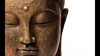 What is Mindfulness? Learning from the satipatthana and anapanasati