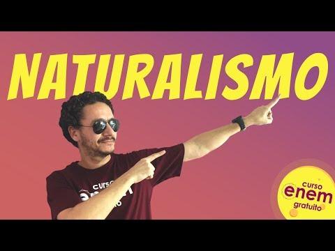 NATURALISMO | Resumo de Literatura para o Enem