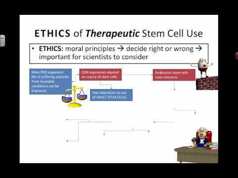 Ethics of Therapeutic Stem Cell Uses (2016) IB Biology