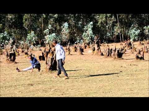 Ethiopian Experience