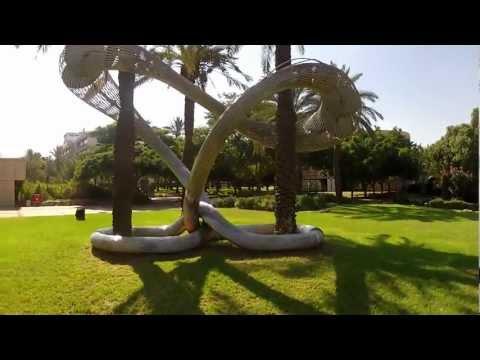 Tel-Aviv University Drone View