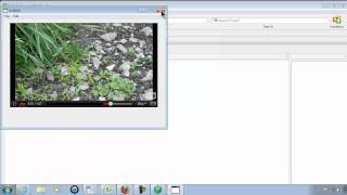 Playing YouTube Videos In RealBasic - Real Studio RB - Tutorial