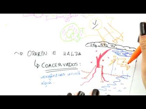Me Salva! OV02 - Evolução química, Oparin e Haldane, Miller